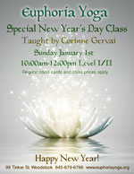 Special New Years Day Class with Corinne